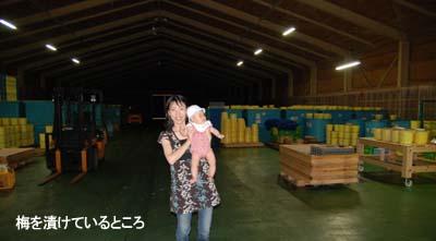 20080813_2.jpg