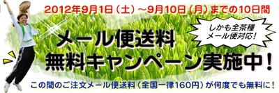 20120901_4.jpg