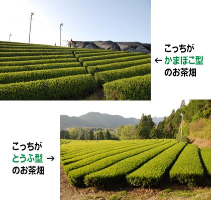 jyuku02.jpg